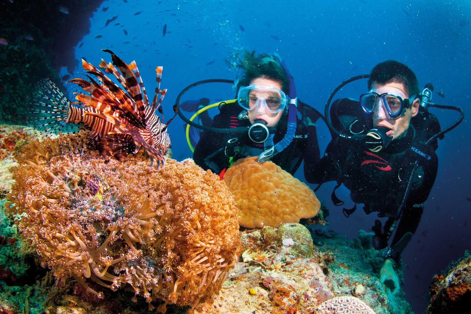 great-barrier-reef-scuba
